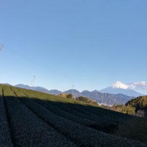 有度丘陵 – 静岡県