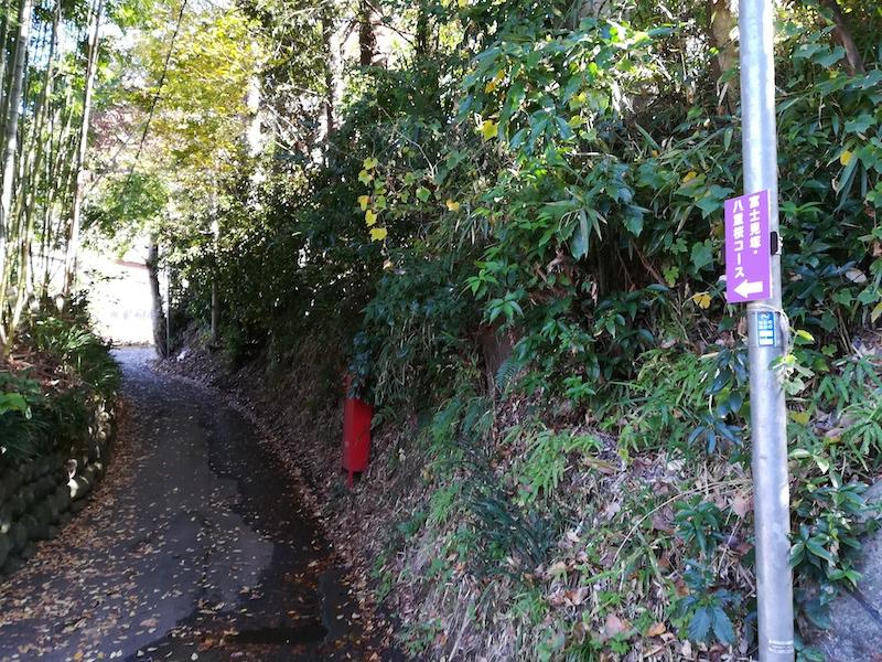 富士見塚を目指して