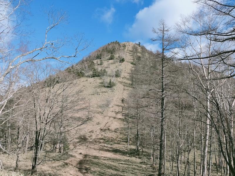 笠取山の急登を目の前に憂鬱になる
