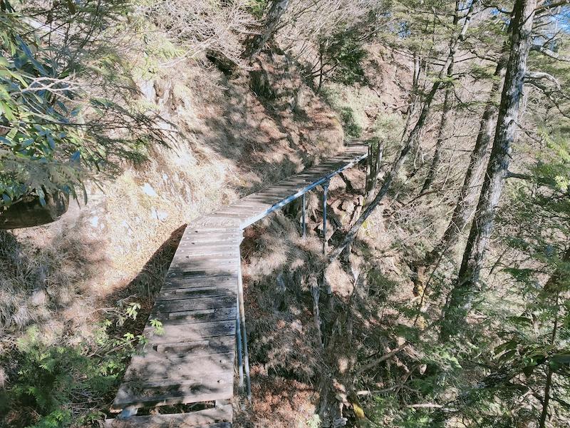 今日の登山道は梯子が多い