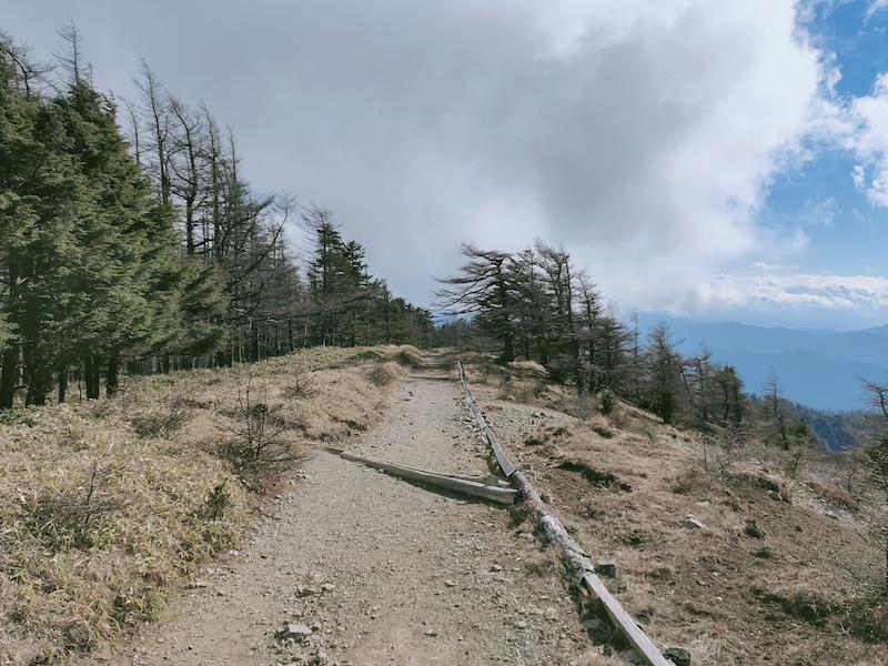雲取山から鴨沢へ下山
