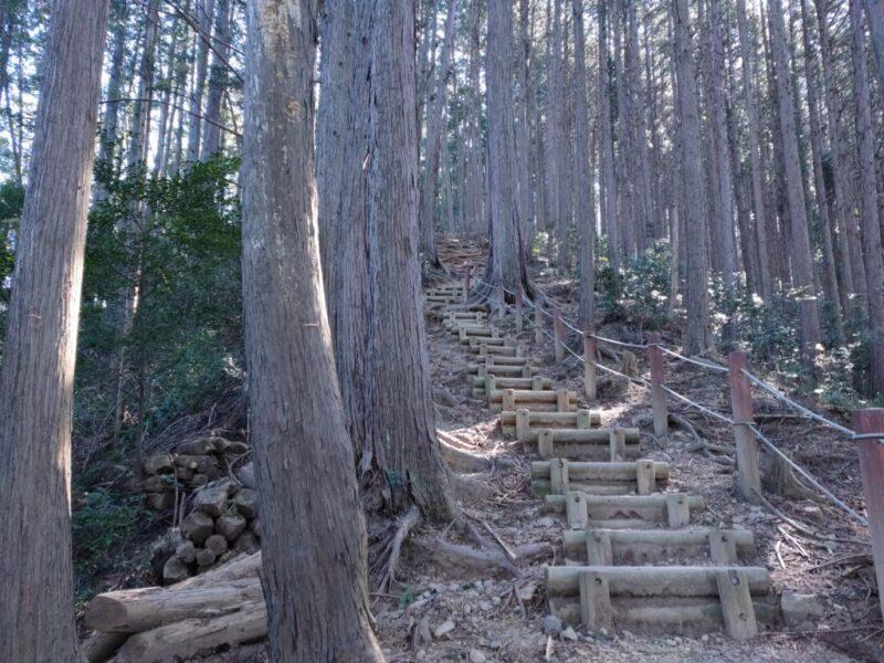 山の階段はしんどい