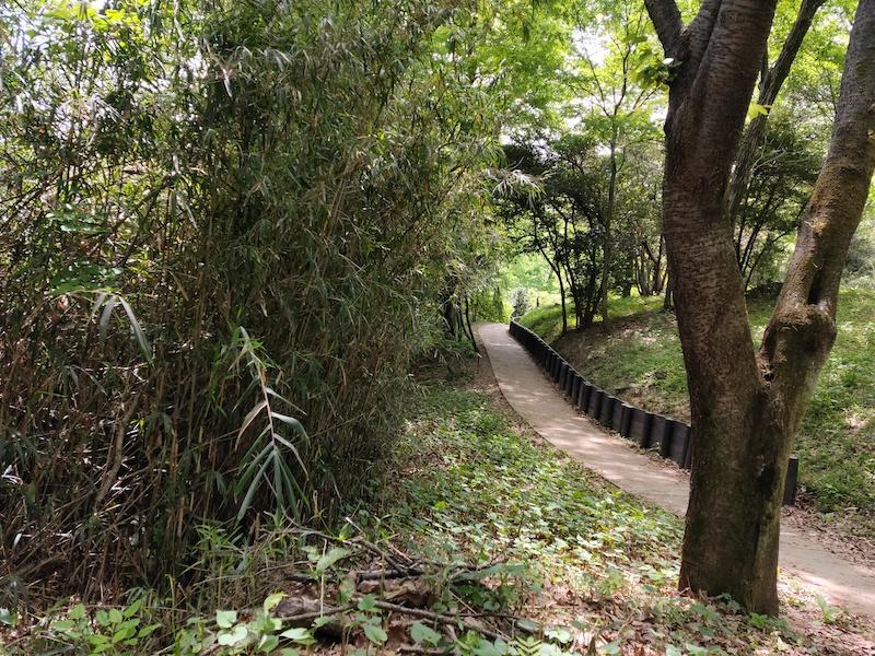 平山城祉公園の舗装された道